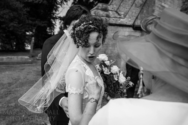Bee gets under bride's dress