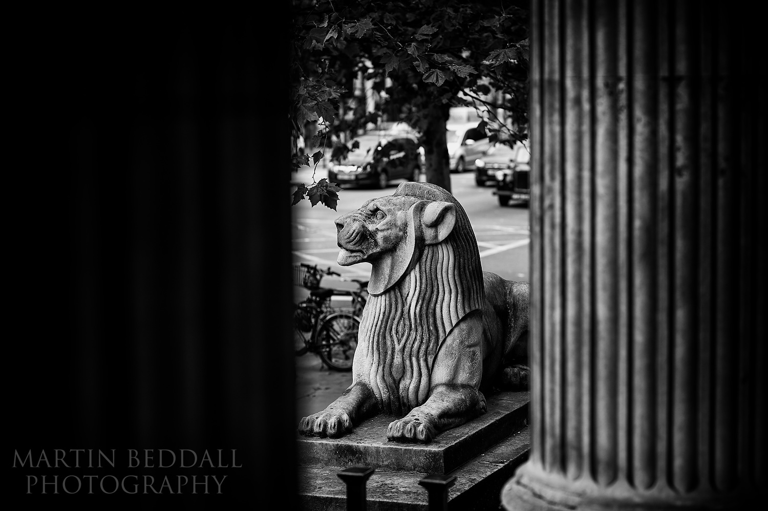 Lion outside Old Marylebone Town Hall