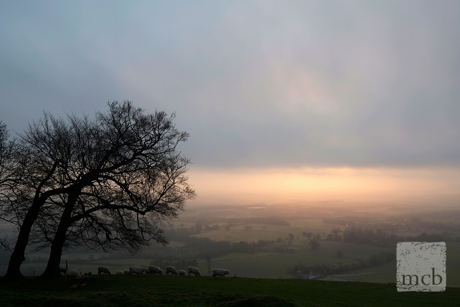 View from Chanctonbury Hillfort at sunrise on the 1st of May 2013 taken with Fujifilm X-Pro 1