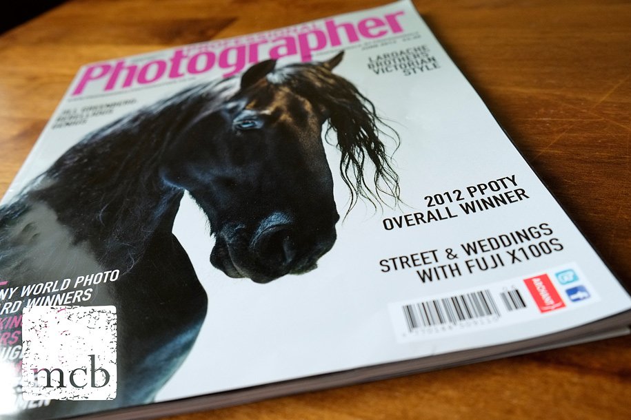 Profesional Photographer magazine June 2013 issue