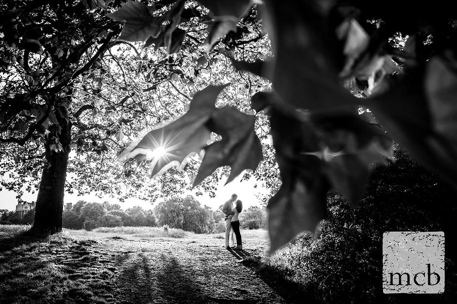 The sun bursts through the leaves in a romantic shot of the engaged couple on Hampstead Heath