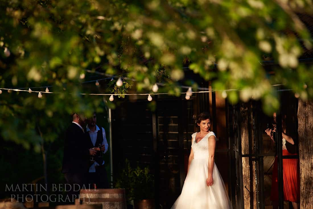 dewsallcourtwedding113
