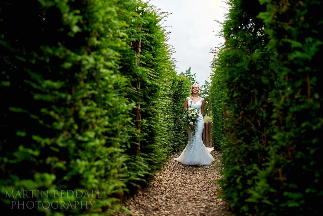 Bride in the maze at Hever Castle