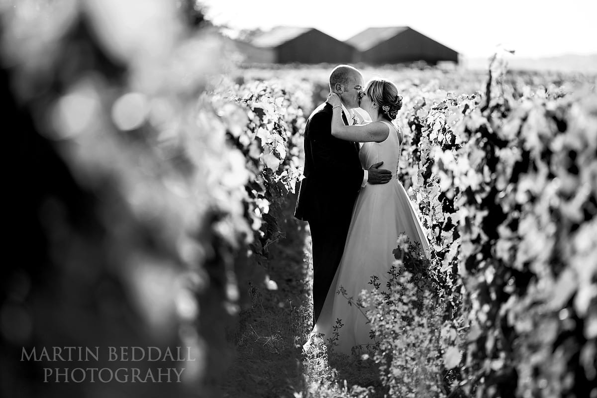 Kiss among the vines at Château Soutard