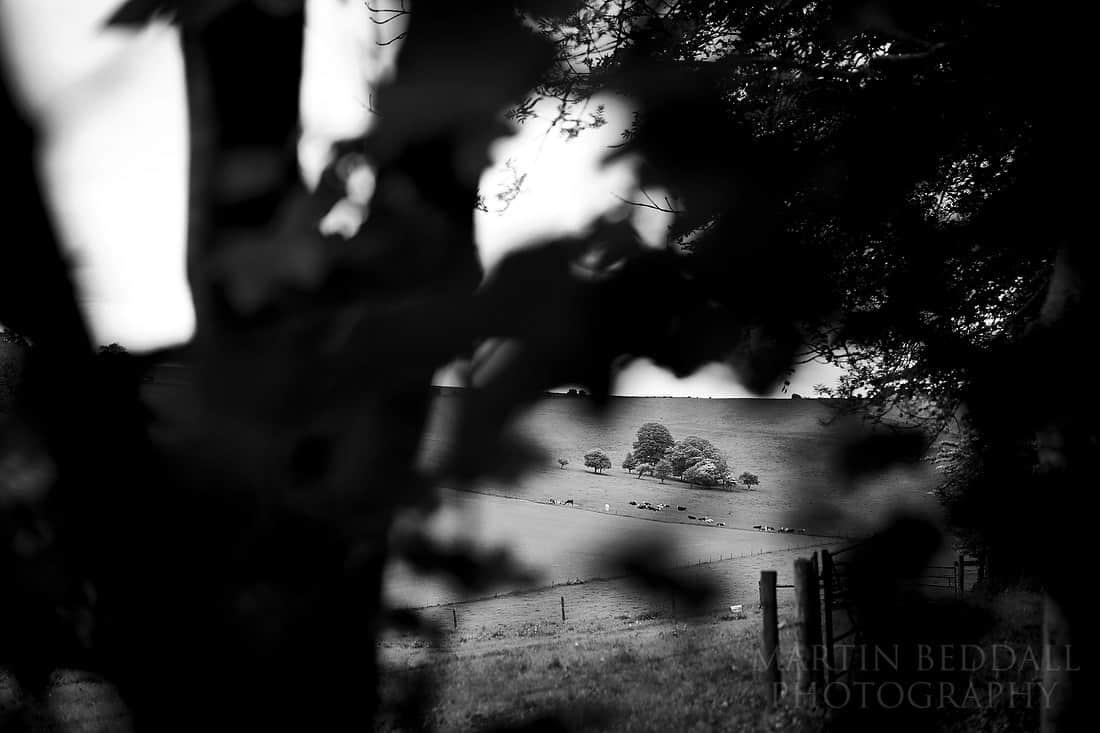 Land around Cissbury barns