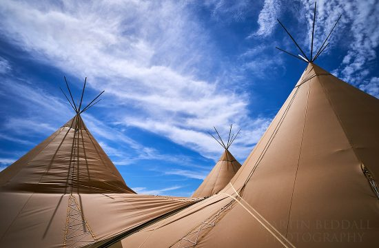 Party Field tipi
